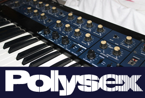 frontpage-polysex300