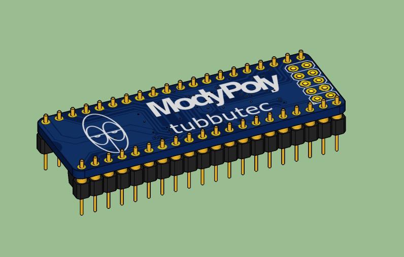 ModyPoly-Model-1